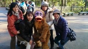 H26TDS猿軍団